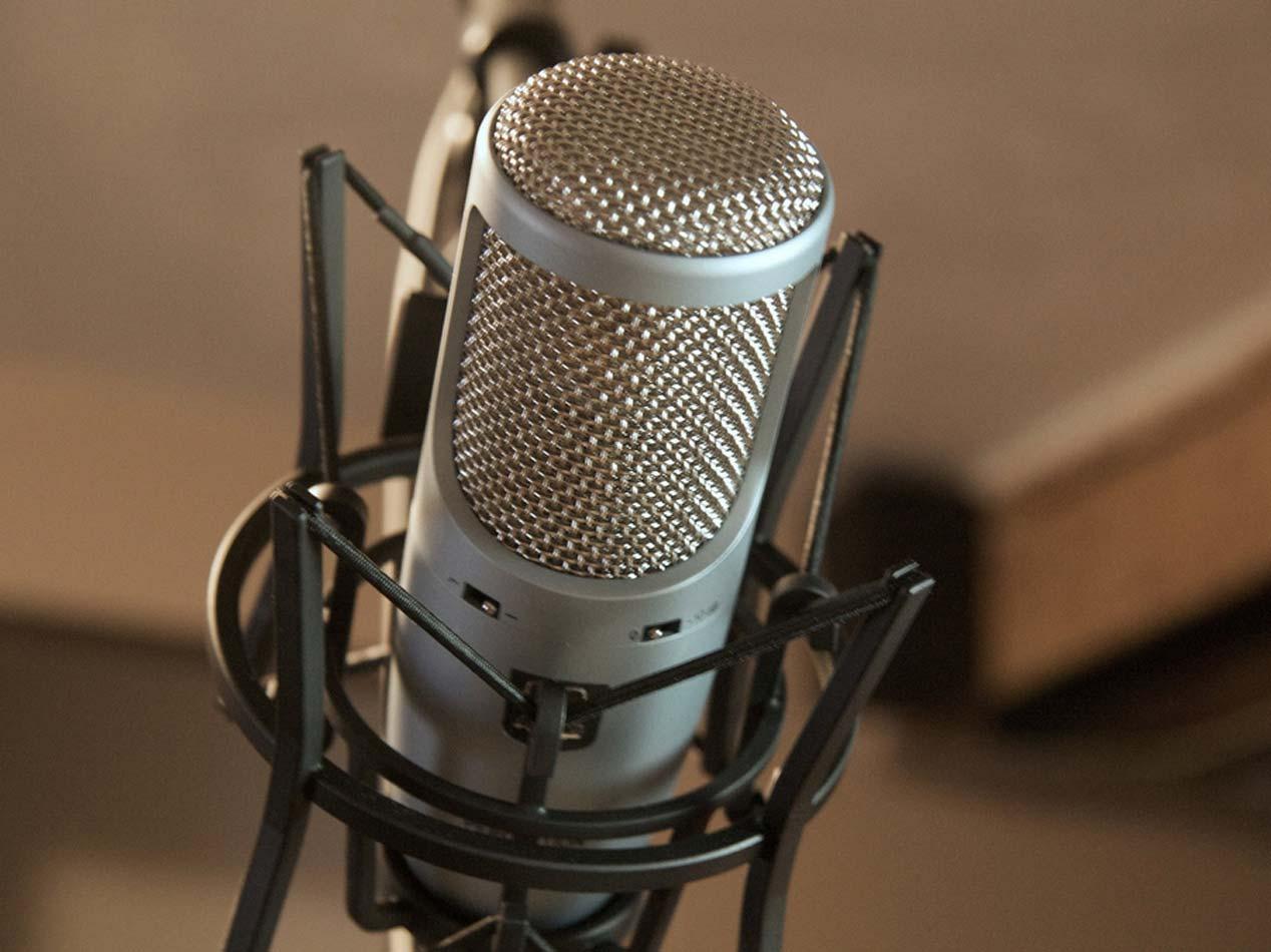 Heil PR-40 - Microfono per Podcast - Professionale