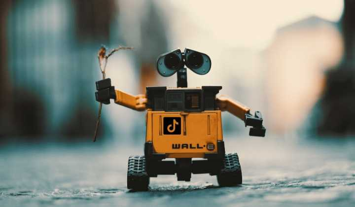 Tik Tok Bot